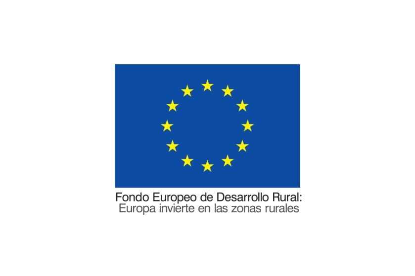 Europar_batasuna_kolore- gaztelaniaz